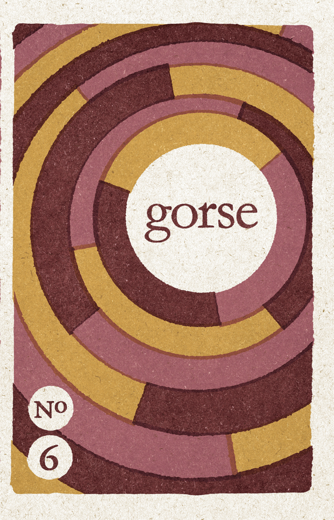 GorseNo6-Front&Back-Texture.indd